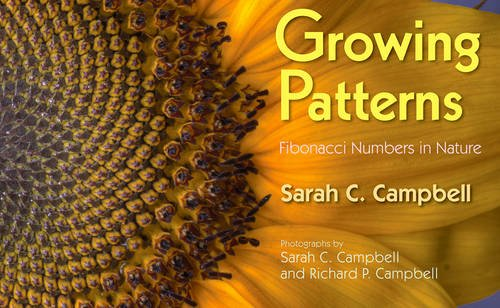 growing-patterns-fibonacci-numbers-in-nature